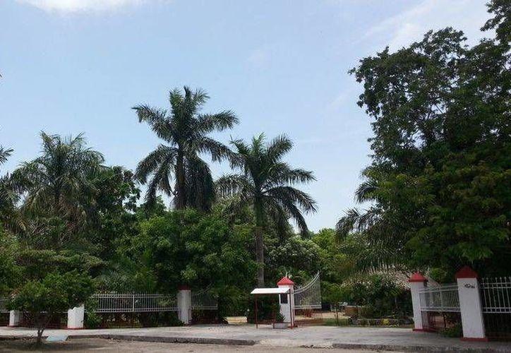 Será remodelado el acceso principal del parque. (Twitter/@Vivoenchetumal)
