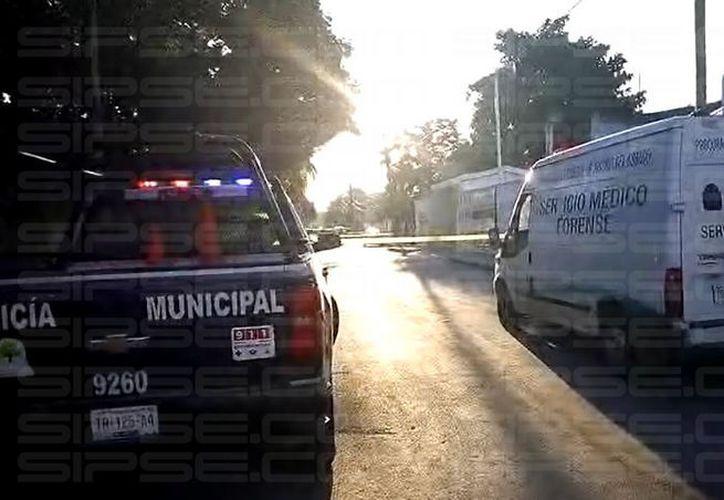 La cabeza humana fue hallada afuera de un domicilio ubicado cerca de una escuela primaria de Tulum. (Foto: Redacción/SIPSE)
