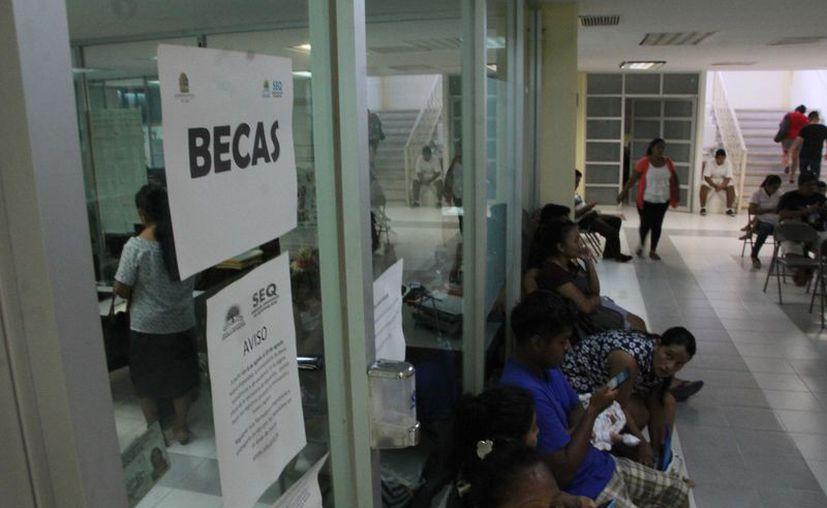 Tienen un padrón de dos mil 653 beneficiarios, de quienes se realiza una revisión de documentos. (Paola Chiomante/ SIPSE)