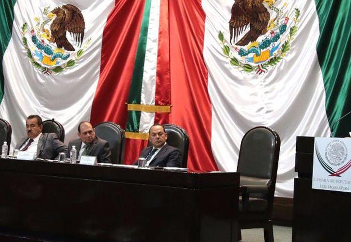 La diputada Lucely Alpizar Carrillo solicitó al titular de la Sagarpa, José Calzada Rovirosa, proteger las especies marinas. (SIPSE)
