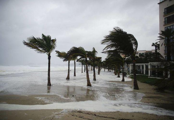 Lo peor del huracán Odile en Baja California Sur se espera en la madrugada. (AP)