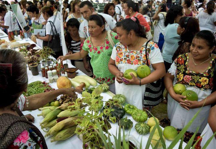 Este viernes autoridades del DIF Yucatán conmemoraron en Cuzamá el Día Mundial de la Alimentación. (Fotos cortesía del Gobierno de Yucatán)