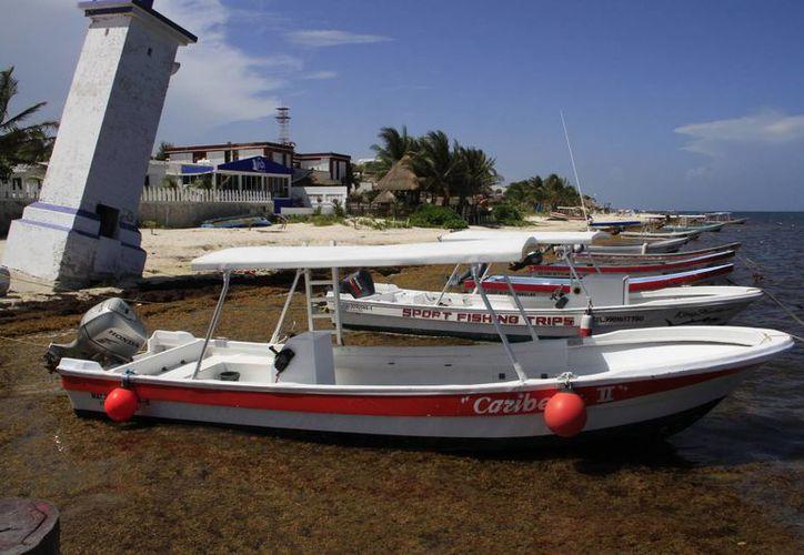 Puerto Morelos está incluido dentro del padrón de rescate y control del sargazo. (Tomás Álvarez/SIPSE)