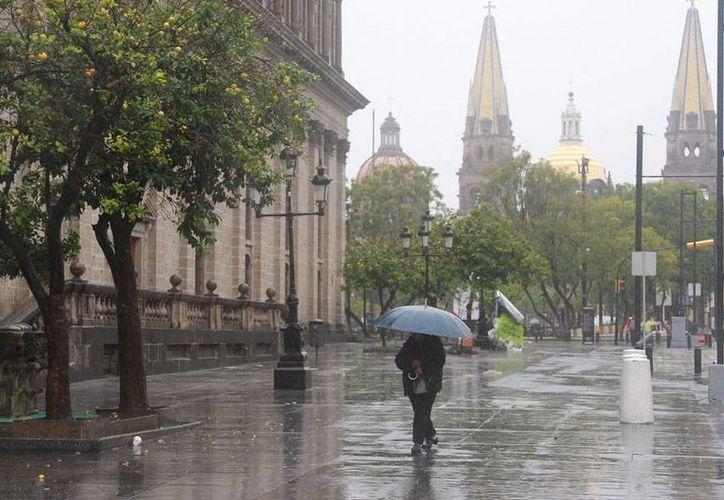 A pesar de que 'Patricia' perdió prácticamente toda su fuerza destructiva como huracán, las lluvias que como tormenta tropical se esperaban en varios estados también pueden afectar severamente algunas zonas, por lo que las autoridades pidieron tomar previsiones. (Notimex)