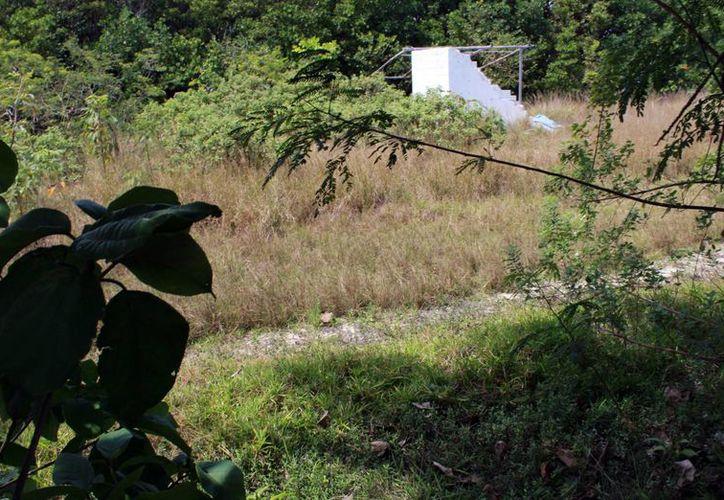 El parque se ubicará frente al Museo Maya de Cancún. (Luis Soto/SIPSE)