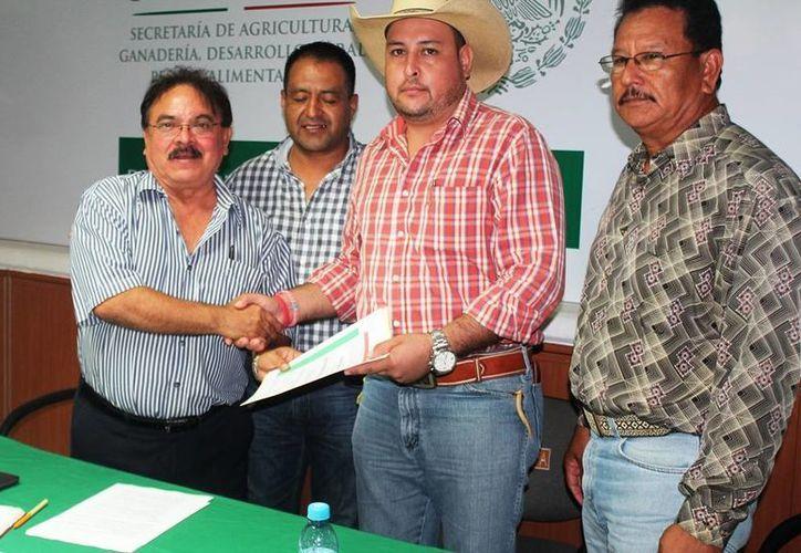 Cinco productores ganaderos de Quintana Roo obtuvieron el primer reconocimiento. (Edgardo Rodríguez/SIPSE)