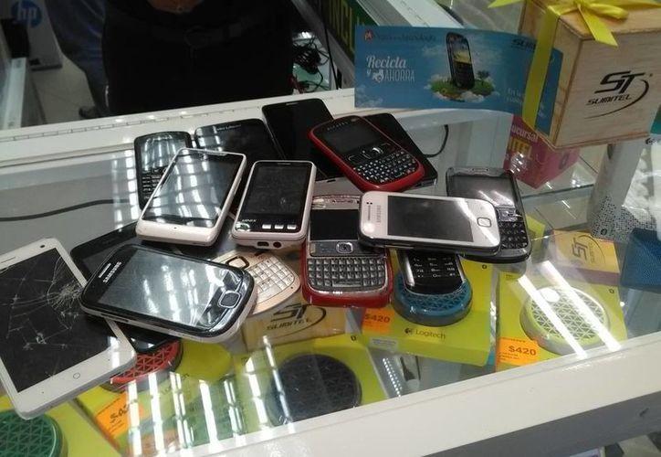 Los celulares que ya no funcionan serán cambiados por una planta y un cupón para productos de telefonía móvil. (Tomás Álvarez/SIPSE)