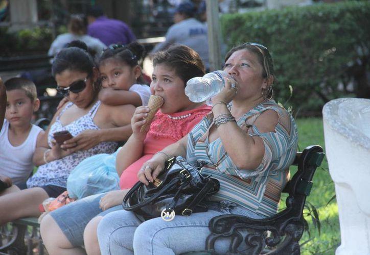 Las temperaturas serán calurosas en la mayor parte del país. Se pronostica que en Yucatán estará arriba de los 42 grados centígrados. (Milenio Novedades)