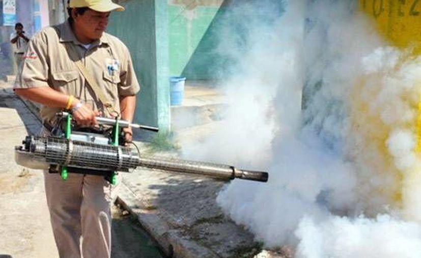 PIden reforzar el combate al dengue. Se reportó una disminución del 42 por ciento de esta enfermedad en comparación con el año pasado. (Milenio Novedades)