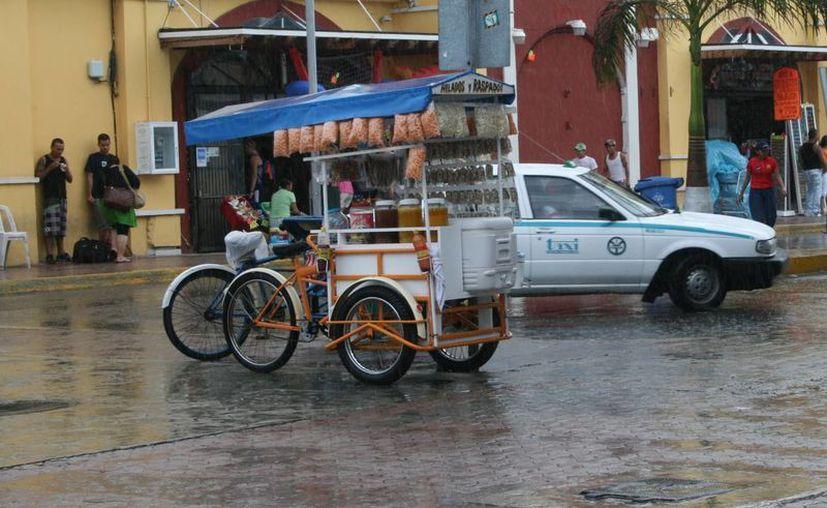 Depurarán el comercio informal de la Quinta Avenida. (Adrián Barreto/SIPSE)