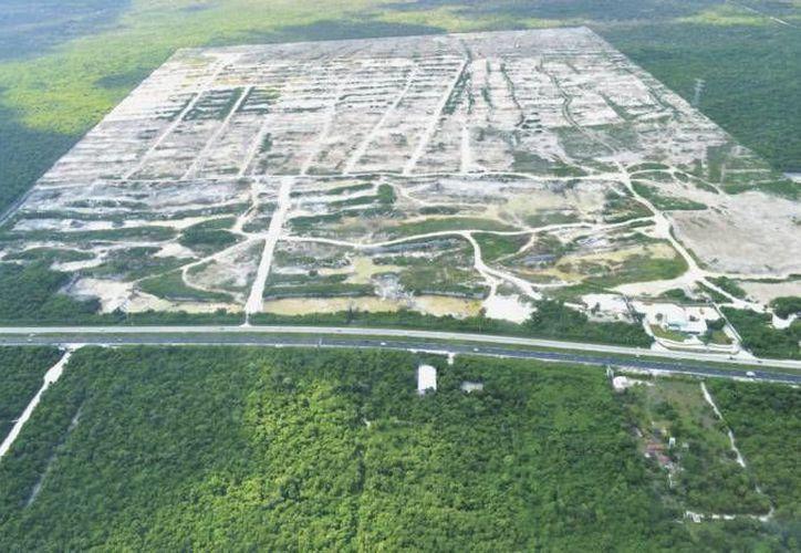 """En la página causes.com, el tema promovido bajo el nombre """"Di no al Dragon Mart en Cancún"""" ha sumado 35 mil firmas electrónicas. (Redacción/SIPSE)"""