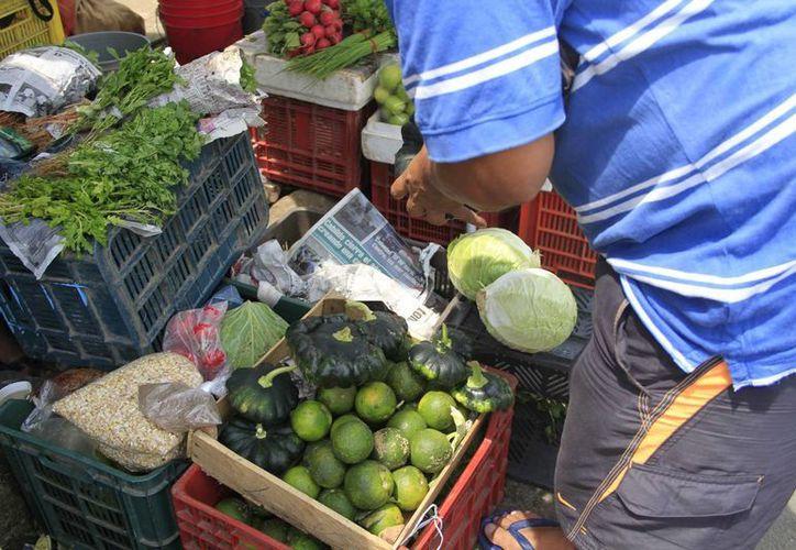Los precios de los productos en Chetumal no mostraron gran variación. (Harold Alcocer/SIPSE)