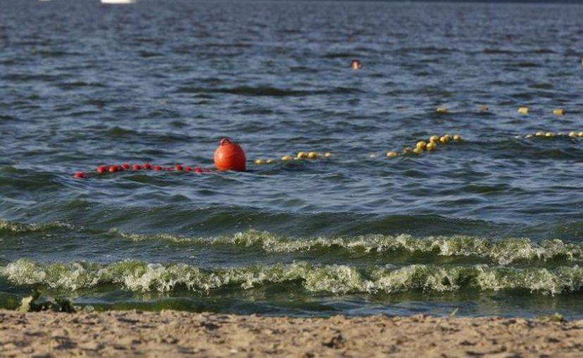 En 12 años, el mar Báltico no ha tenido un crecimiento tan intenso de cianobacterias. (El Debate)
