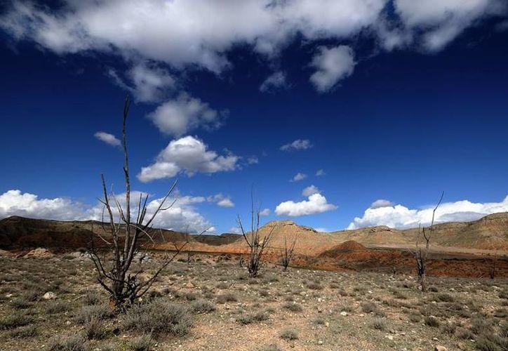 La Tercera Conferencia Científica de la Convención de las Naciones Unidas de Lucha Contra la Desertificación será en Cancún. (Foto de contexto/Internet)