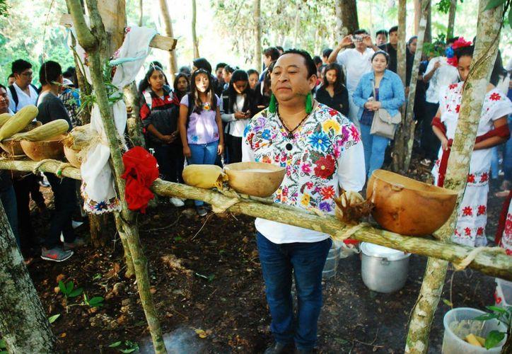 Estudiantes de la Universidad Intercultural Maya, de José María Morelos, realizaron la ceremonia Jo'ol Che' Kool, para agradecer la primera cosecha de maíz.  (Tony Blanco/SIPSE)