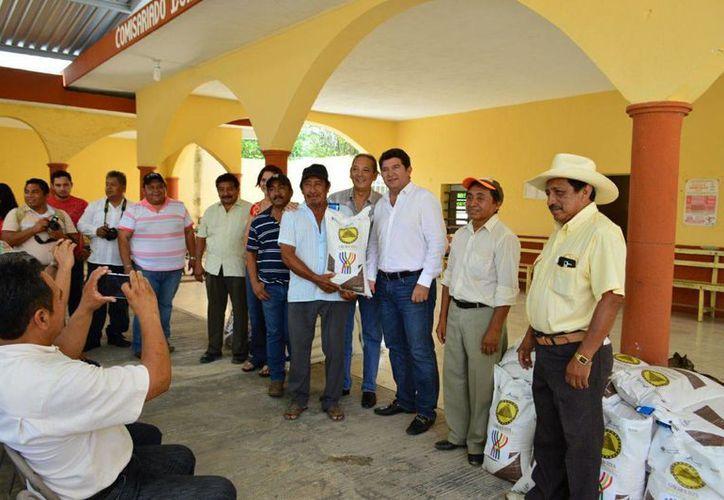 Al hacer entrega de 10 toneladas de semillas de maíz, en compañía del alcalde de Tizimín, Jorge Vales Traconis, el Director General de la Seder, Mario González González destacó las ventajas del maíz mejorado. (Foto cortesía del Gobierno de Yucatán)