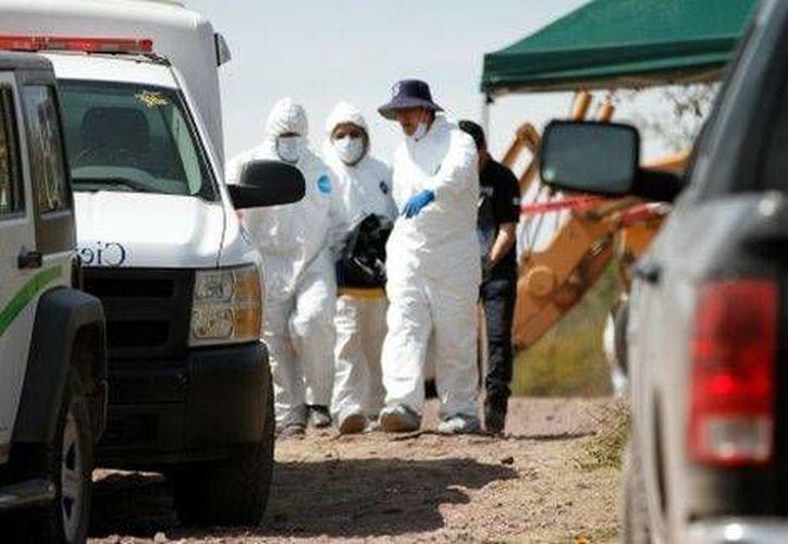 Los trabajos de investigación aún no han terminado tras el hallazgo de fosas clandestinas en Tlajomulco, Jalisco. (Milenio)