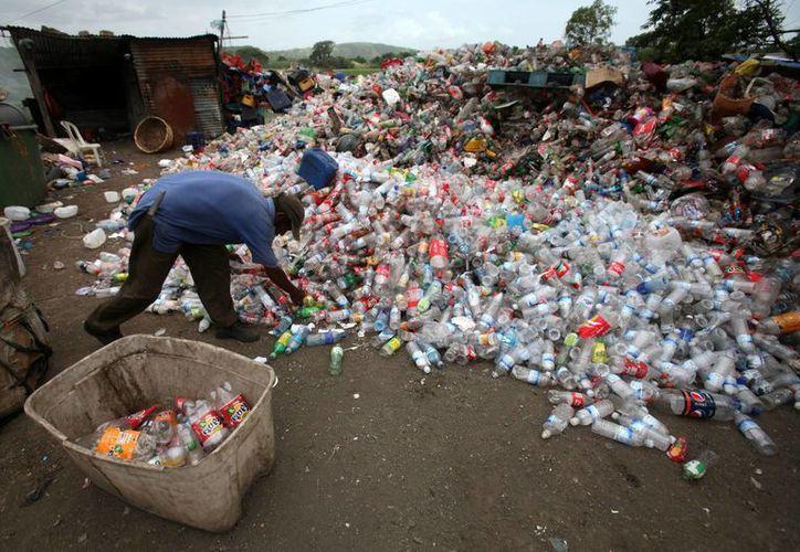El vertedero recibe hasta 1,300 toneladas de desecho, orgánico en un 60%, proveniente de la capital de Nicaragua. (EFE)