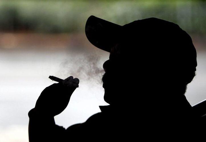 El consumo de tabaco daña la zona del cerebro ligada a las funciones básicas de la mente. (EFE/Archivo)
