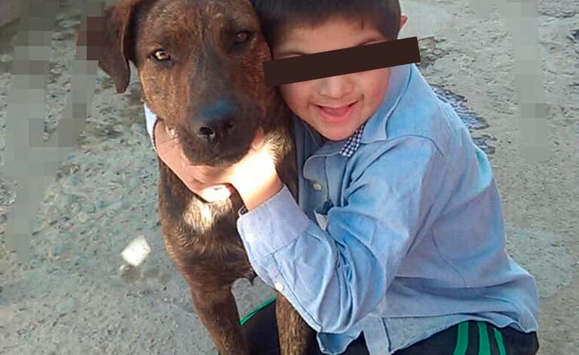 """""""Todavía no le dijimos que lo mataron, no sabemos cómo lo va tomar"""". (Internet)"""