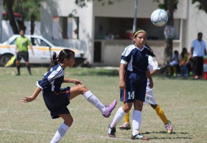 Las Olimpíadas se llevaran a cabo del 16 al 22 de mayo próximo de la ciudad de Tijuana. (Alberto Aguilar/SIPSE)