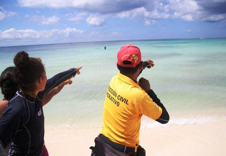 Tres lagartos motivaron ayer un operativo en la zona de playas de Punta Esmeralda. (Octavio Martínez/SIPSE)