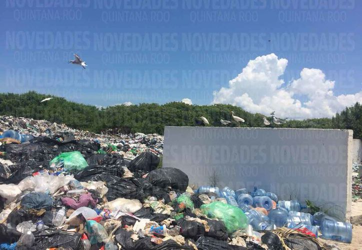 El tiradero de basura a cielo abierto en la isla. (Eva Murillo/SIPSE)