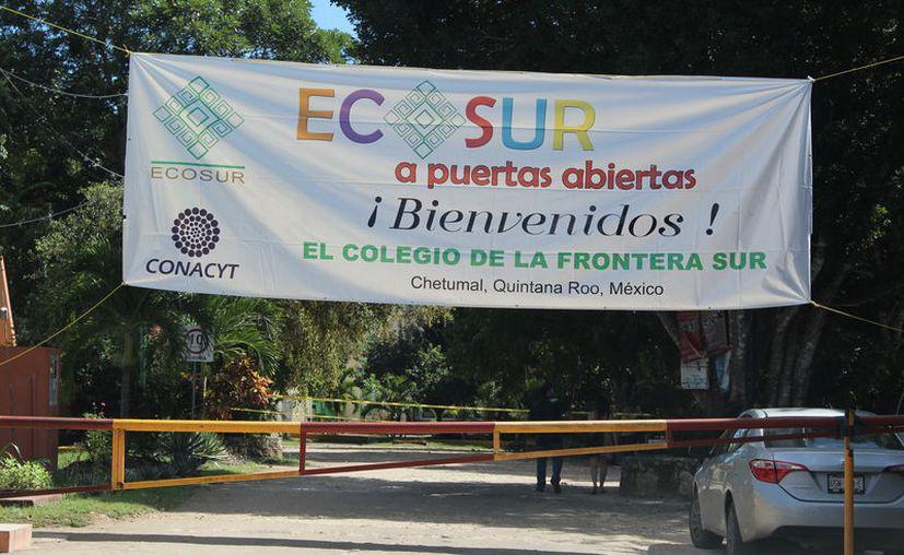 La edición del año pasado contabilizaron mil 100 participantes. (Joel Zamora/SIPSE)