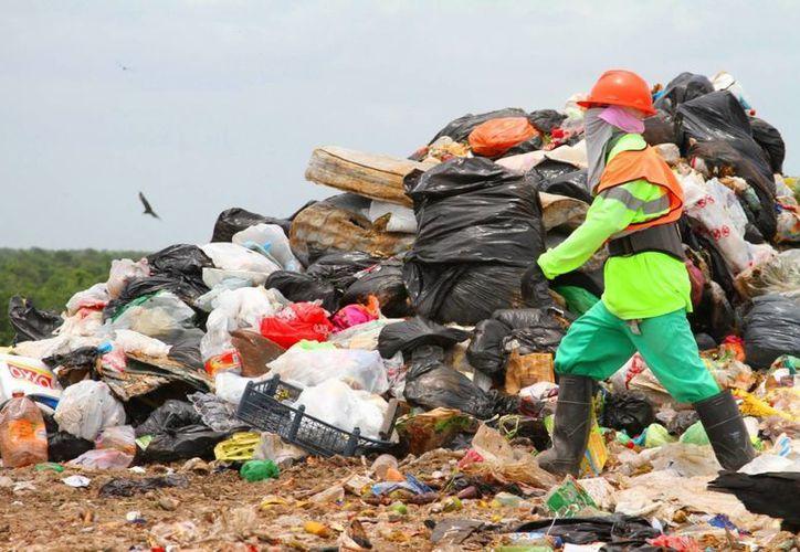 En los primeros ocho meses de 2015 se han recolectado 132 mil toneladas de basura en el municipio. (Daniel Pacheco/SIPSE)