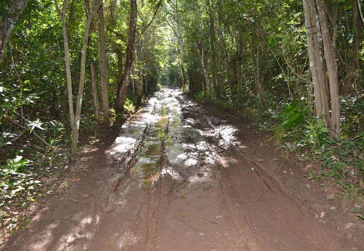 Los caminos empeoran con la lluvia y es mas difícil trasladarse con el lodo.(Juan Rodríguez/SIPSE)
