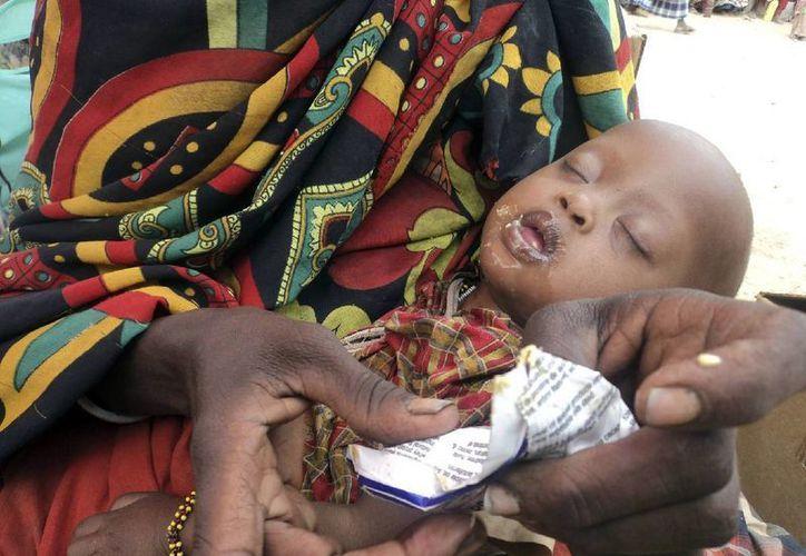 El Indice Global del Hambre indica que las hambrunas se han reducido considerablemente en el planeta. (AP)