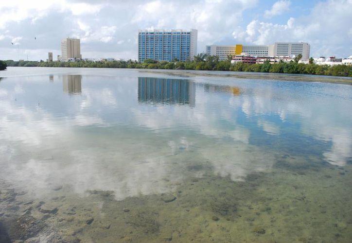 El estado ha elaborado proyectos para disminuir los efectos del cambio climático. (Israel Leal/SIPSE)