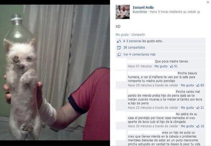 En varias ocasiones ha trascendido en redes sociales el maltrato a las mascotas, como este joven que en noviembre de 2013 embotelló a su perro y lo difundió en Facebook. (Archivo/SIPSE)