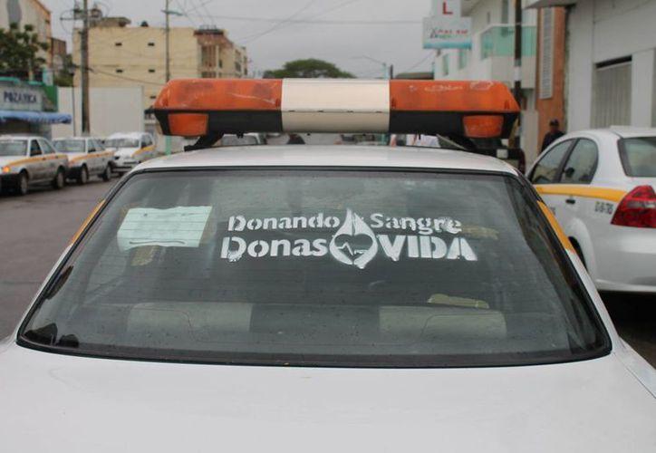 Más de 200 taxistas se sumaron a la campaña estatal; en la imagen, se pone la primera leyenda en una unidad de supervisión. (Harold Alcocer/SIPSE)