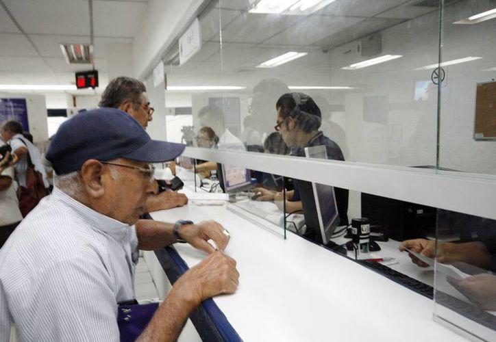 La credencial del Inapam otorga descuentos a adultos mayores. (Milenio Novedades)