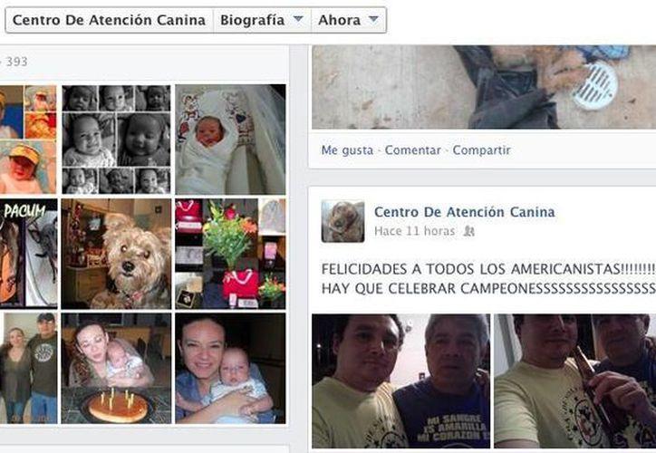 Comparten celebración en la página de denuncias del Centro de Atención Canina. (Facebook/centro.canina)