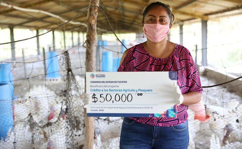 Por indicaciones del Gobernador, se otorgaron 200 créditos del Focapy por 10 mdp entre los productores yucatecos. (Novedades Yucatán)