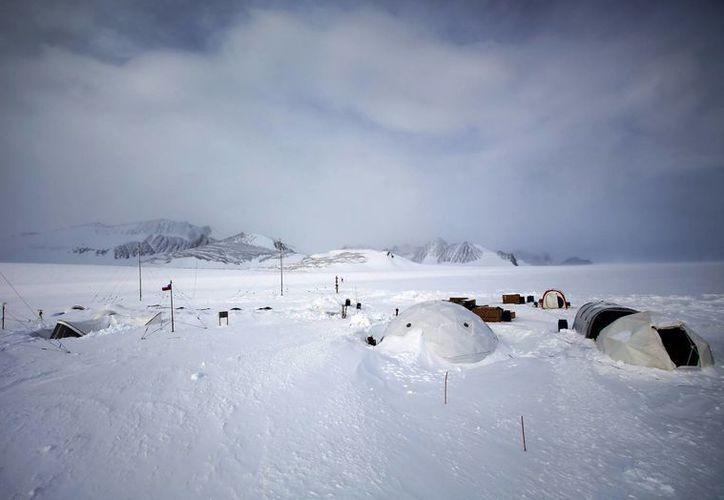 Los científicos esperaban un notable aumento de temperaturas en la Antártida hasta dentro de 30 años. (EFE/Archivo)