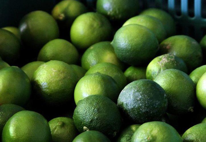 Es el precio más bajo del limón desde mediados de 2014, cuando superó la barrera de 60 pesos por un kilogramo, debido a que la cosecha local se agotó y fue necesario traer producto de otros estados. (Archivo/SIPSE)