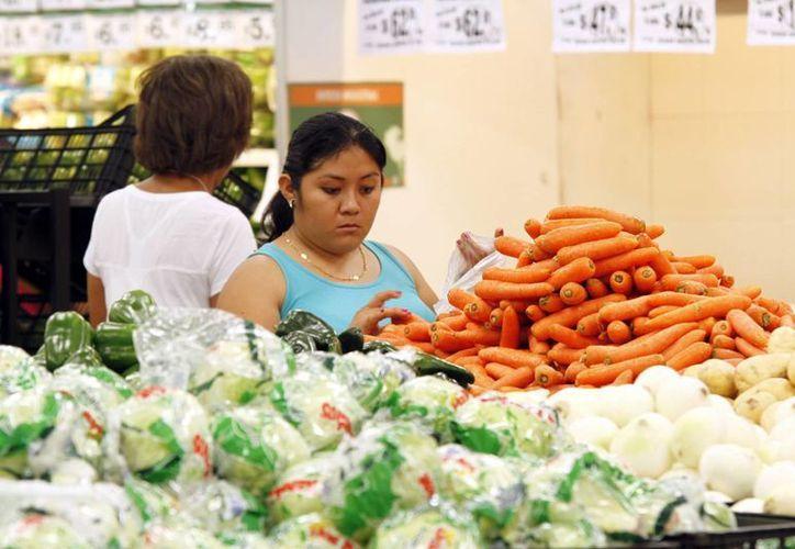 Los vegetales aportan nutrientes contra la hipertensión. (Milenio Novedades)