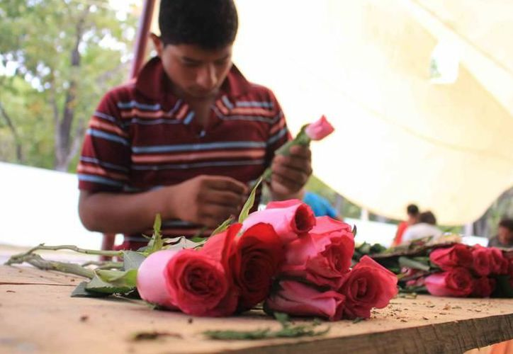 Las rosas son las flores que más se regalan en el Día de la Madre. En Mérida, las florerías aumentarán sus precios. (Archivo/SIPSE)