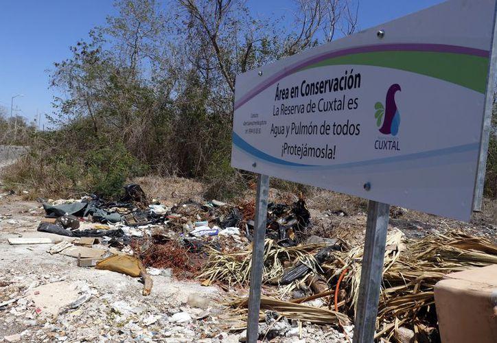 Cuxtal abarca 10 mil 700 hectáreas. (Jorge Acosta/Milenio Novedades)