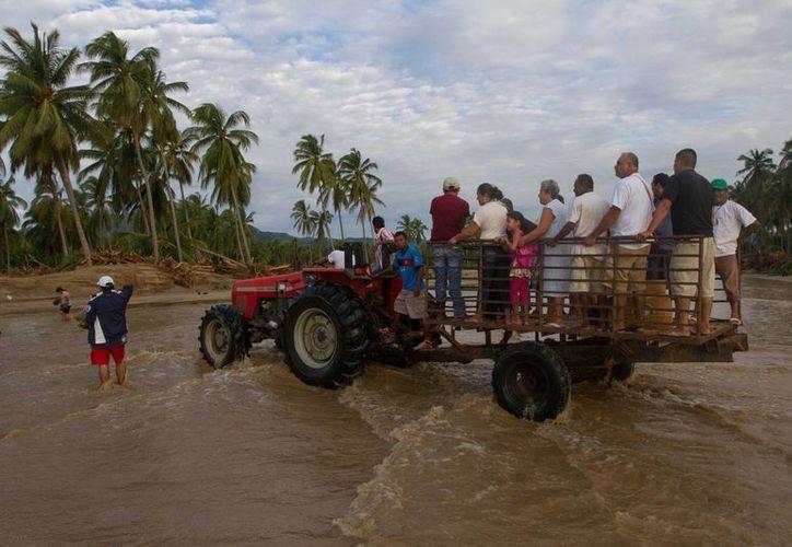 Hasta ahora la UNAM ha podido llenar tres camiones con provisiones para los damnificados por las lluvias y huracanes. (Notimex)