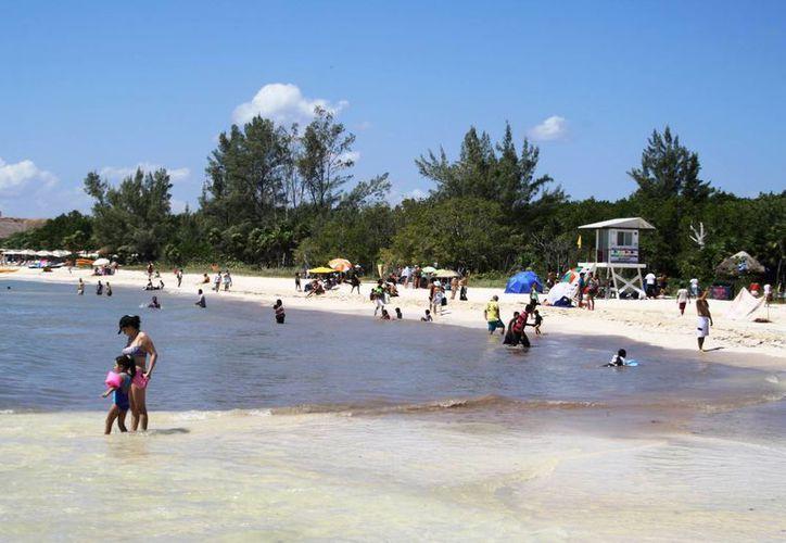 Una parte de la playa del Punta Esmeralda luce oscura debido al sargazo. (Octavio Martínez/SIPSE)