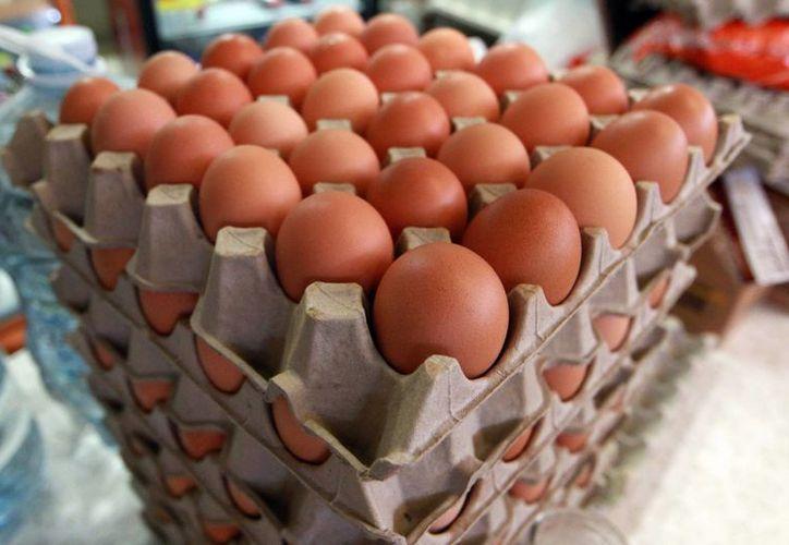 El gobierno asegura que el precio del huevo no se verá afectado por el virus. (Agencias)