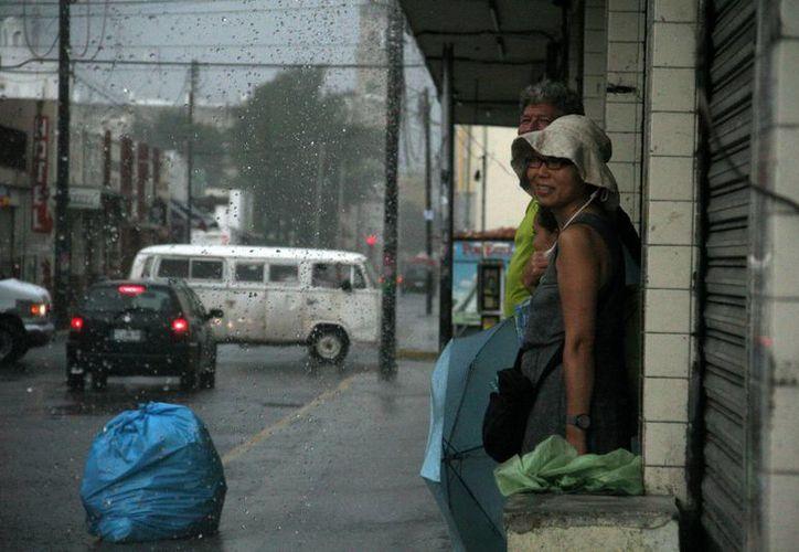 Esta familia buscó refugio ante lo fuerte de la precipitación vespertina.  (Juan Albornoz/SIPSE)