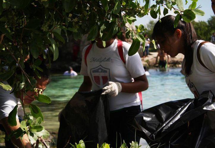 En noviembre iniciará el programa Guardianes de la Selva en Playa del Carmen. (Octavio Martínez/SIPSE)
