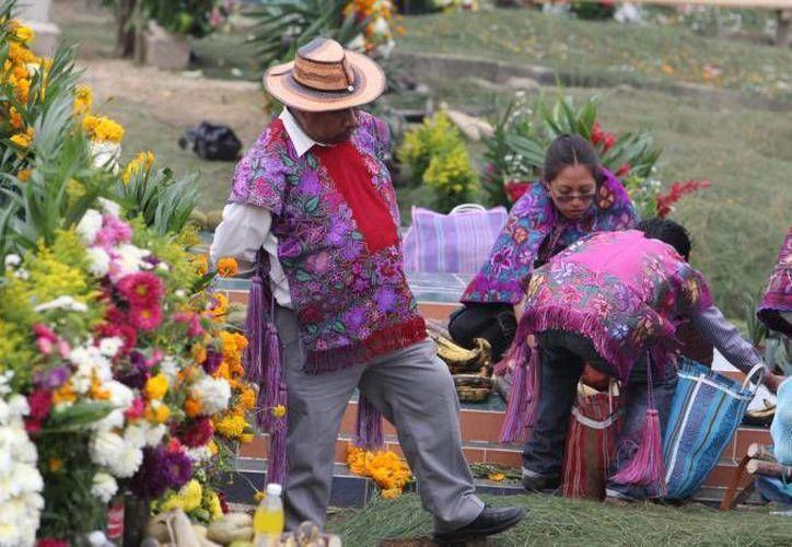 El primer Taller de Capacitación dirigido a Comunidades Indígenas, forma parte de los esquemas de atención y capacitación a pequeños productores: Sagarpa. (Notimex/Contexto)