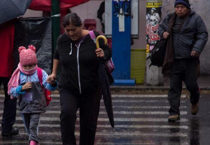 El potencial de lluvias previstas para hoy martes y mañana miércoles es de intensas a torrenciales, además de que las bajas temperaturas continuarán. (Animal Político)