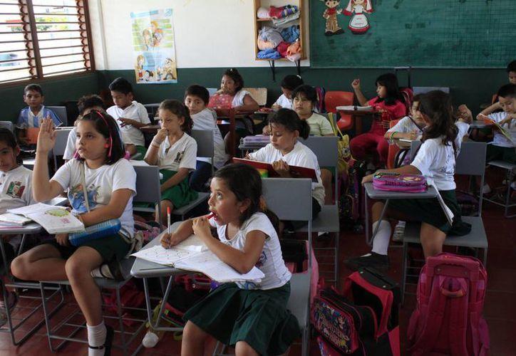 Este protocolo deberá llegar a los 15 mil maestros del Estado para que apliquen criterios uniformes. (Harold Alcocer/SIPSE)